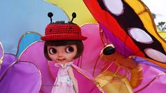 Its a colourful Bugs World!!!