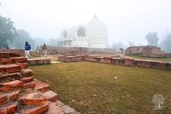 India_0524
