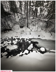 Stepping stones (DelioTO) Tags: 4x5 adoxchs100 blackwhite d23 desaturatedtrails february landscape natparks ontario pinhole rural winter woods autaut