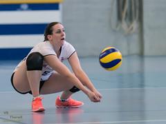 170211_VBTD1-Toggenburg_080.jpg (HESCphoto) Tags: volleyball vbtherwil volleytoggenburg damen nlb 99ersporthalle therwil saison1617