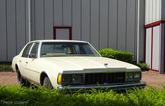 1979 Chevrolet Caprice (peterolthof) Tags: chevrolet caprice 67rslx hoogkerk peterolthof