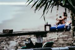 Shelly. (wavedog.co) Tags: beach bali canggu