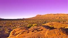 Valley of Fire 3584 G (jim.choate59) Tags: sunset desert valleyoffire nevada jchoate arid sandstone rock stone mountain scrub dry on1pics