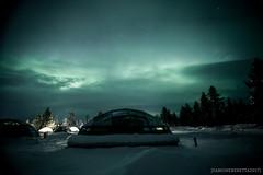 IMG_2248 (F@bione©) Tags: lapponia lapland marzo 2017 husky aurora boreale northenlight circolo polare artico rovagnemi finalndia finland