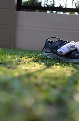 New love, new life... (Huey Yoong) Tags: morning stilllife grass socks morninglight dof bokeh lawn naturallight running runningshoes saucony primelens nikkor35mmf2 sooc nikond600