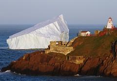 Iceberg at Fort Amherst (Karen_Chappell) Tags: ocean seascape canada nature newfoundland landscape scenery scenic stjohns atlantic iceberg nfld eastcoast atlanticcanada fortamherst