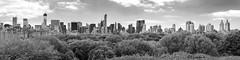 NYC Skyline from the Terrace (Bruce Livingston) Tags: nyc bw panorama newyork monochrome skyline cityskyline
