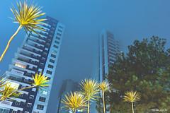 (RMLucas) Tags: brazil sky brasil night canon eos lights cu curitiba noite session luzes parana ceu 60d rmlucas