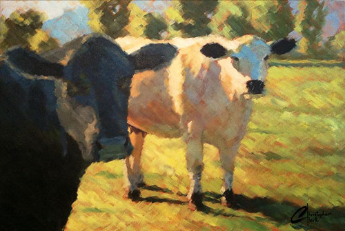 Black-and-White-Cows