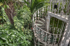 Kew Gardens, London (linden.g) Tags: greatphotographers dragondaggerphoto