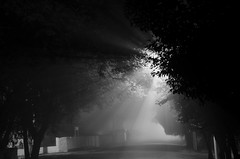 Neblina (artevaires) Tags: cruzadas cruzadasgold cruzadadiamond