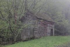 Old Barn in Early Morning Fog (scottnj) Tags: trees fog barn hill calm explore catskills tranquil explored scottnj scottodonnellphotography