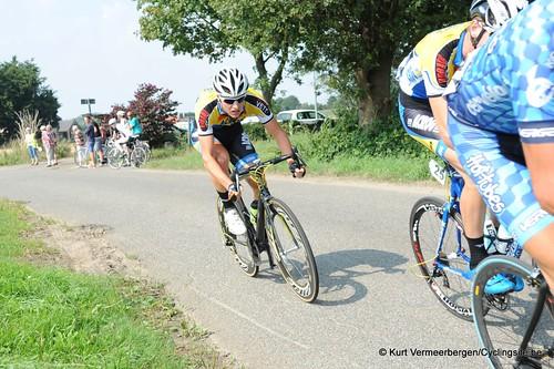 Geel Oosterlo  (80)