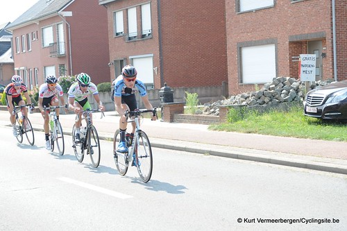 Geel Oosterlo  (71)