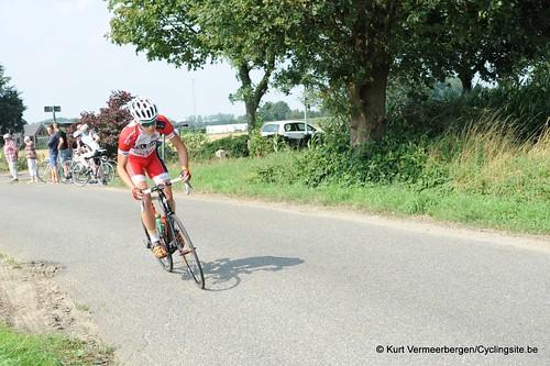 Geel Oosterlo  (95)