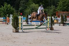 DSC04560_s (AndiP66) Tags: horse macro sports sport schweiz switzerland jumping sony july sp di if juli alpha tamron concours pferd equestrian f28 solothurn ld horsejumping 70200mm wettbewerb 2014 springen kantonsolothurn balsthal springreiten cantonsolothurn andreaspeters pferdespringen 77m2 a77ii ilca77m2 77ii 77markii slta77ii