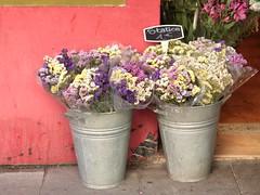 #8 Flores a la venta (VictoriArroyo) Tags: madrid tesorolvm juegolvm