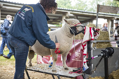 Kent_County_Show_2014_009