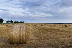 Harvest time (awibrin) Tags: sunset field champs coucher bale moisson