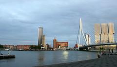 rotterdam - erasmusbrug (JimmyPierce) Tags: netherlands rotterdam erasmusbrug