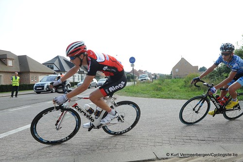 Geel Oosterlo  (233)