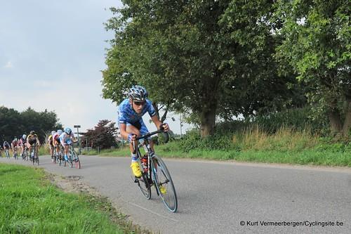 Geel Oosterlo  (211)