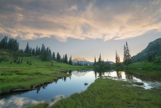 Tipsoo Lake Moment