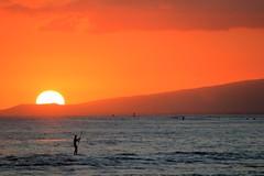 Waikiki sunset (Hakea) Tags: ocean sunset orange beach nature hawaii evening waikiki oahu honolulu waikikisunset standuppaddle lporange2016