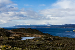 (Leo-Cesario) Tags: sea beagle argentina del ushuaia canal lion fuego tierra