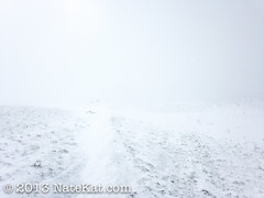 Whiteout on the Trail (NateKat Photography) Tags: snow backpacking wyoming whiteout tetoncresttrail iphone5