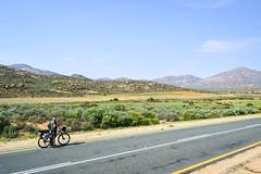 Cycling on the roads of Namaqualand, South Africa (jbdodane) Tags: africa bicycle cycletouring cycling cyclotourisme day653 flowers friends northerncape roads southafrica velo freewheelycom namaqualand namakwaland jbcyclingafrica