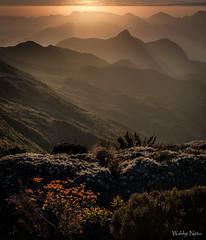 Por do Sol no Açu (Waldyr Neto) Tags: sunset pordosol mountains montanhas petrópolis crepúsculo parnaso açu serradosórgãos camposdealtitude