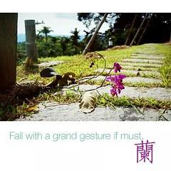 即使跌倒,姿勢也會很豪邁! #fall#with#a#grand#gesture#if#must (precipitant) Tags: fall grand if gesture must witha