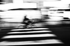 Pressing pause in Shibuya (Brendan Ó Sé) Tags: pressing pause shibuya pressingpauseinshibuya tokyo tokyostreetphotography tokyoatnight thingstodointokyoatnight shibuyaatnight shibuyatokyo japan distort distorted distortedart distortion newart photographicpunctuation minimalblur minimal blur outoffocusphotography photographic punctuation tryingtoseewhatcanbeseenandhowtoseeit abstractblur blurlove bluritall blurred outoffocusart blurredart blurart blurwillsavetheworld bokeh bokey blurry streetblur blurincolour defocus blurphotography brendanblur blurs brendanósé art rebelsabú livelearnlove japanstreetphotography abstractstreetphotography brendanóséphotography brendanó brendanoseapple brendanóséapple brendanóséapplephoto brendanoshea brendanosheaphotography brendanosheaapple iphonephotographeroftheyear2017 brendanóséiphonephotographeroftheyear2017 brendanóséphotographyworkshops brendanósétokyo brendanóséjapan sotokyo brendanóséshibuya