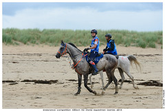 110 Joyce VAN DEN BERG (NED), riding on RUN DU COLOMBIER, endurance competition of the Alltech FEI World Equestrian Games 2014, at Dragey Beach (Olivier PRIEUR) Tags: horses horse mer beach landscape cheval normandie jem paysage endurance plage chevaux dragey joycevandenbergned