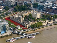 """Poppies and the Tower of London from """"The View"""" in the Shard. (One more shot Rog) Tags: red tower towerbridge remember poppy poppies reds shard toweroflondon masses remembering thousands seaofred momories theshard onemoreshotrog"""