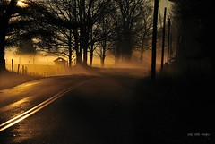 foggy (paul noble photography) Tags: fog sunrise fence nikon maine foggy newengland f80 goldenhour foggymorning leadinglines ruralroad foggyroad southernmaine paulnobleimages