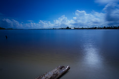 Driftwood.jpg (SPrendergast) Tags: ocean water clouds canon driftwood 7d 1022mm prendergast ndfilter canon7d