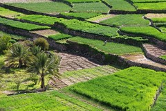 Bilad Sayt, Oman (Frans.Sellies) Tags: img2156 oman عُمان عمان