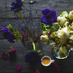 #coffee #flowers (evaeblonski) Tags: coffee flowers