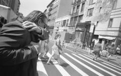(David Chee) Tags: ricoh gr21 kodak trix 400 hc110 newyork nyc chinatown canal lafayette street film analog blackandwhite bw