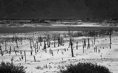 theewaterkloof1 (WITHIN the FRAME Photography(5 Million views tha) Tags: silhouettes dry dam drought theewaterkloof westerncape southafrica landscape bw eos6d tamron150600mmlens