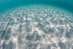 Ses Illetes (Jaime Franch) Tags: snorkel formentera baleares sesilletes tokinaatx107dxfisheyeaf1017mmf3545