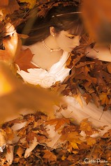 Touched By Light (Claudia Paridae) Tags: autumn light orange leaves leaf costume model dress touch perspective makeup soul pearl breathe lay