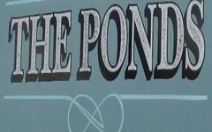 * The Ponds, Barraba NSW