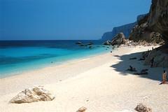 spiaggia gabbiani