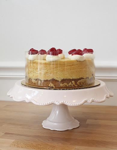 Classic Vanilla Cheesecake with Cherries