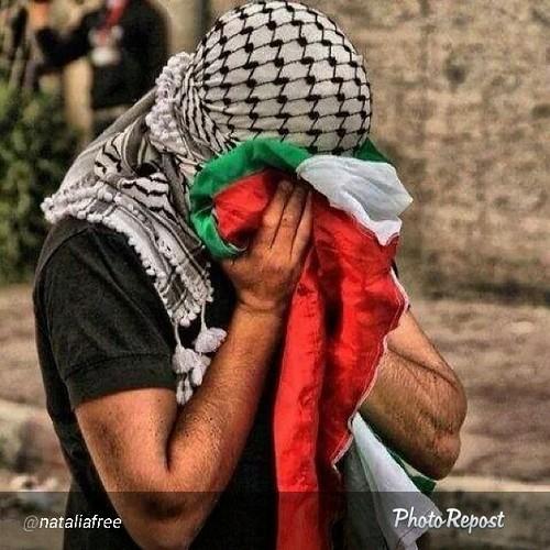 From flickr.com: GAZA Invasion 2014 {MID-214813}