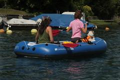 Schlauchboot Sevylor Caravelle K105 ( Gummiboot ) mit Bordhund auf dem Rhein unterhalb S.tein am Rhein im Kanton Schaffhausen in der Schweiz (chrchr_75) Tags: dog chien rio ro river boot schweiz switzerland boat europa suisse swiss fiume rivire hund juli reno christoph svizzera fluss rhine rhein strom rin rijn jolla canot dinghy bote schlauchboot caravelle 2014 rivier  suissa joki rzeka jolle gummiboot flod sloep rhin schwimmweste chrigu 1407 sevylor hochrhein  rhenus chrchr hurni k105 chrchr75 chriguhurni bordhund chriguhurnibluemailch albumrhein gummiboote juli2014 hurni140706 albumrheinsteinamrheinrheinfall albumschlauchbootsevylorcaravellek105 albumhochrhein