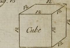Anglų lietuvių žodynas. Žodis carpenter's rule reiškia dailidės taisyklės lietuviškai.